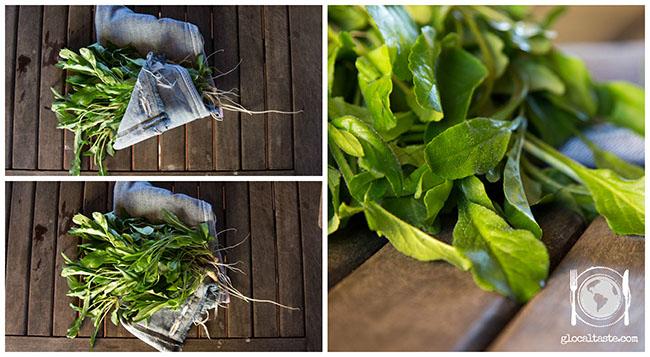 raperonzoli-foglie-e-radici