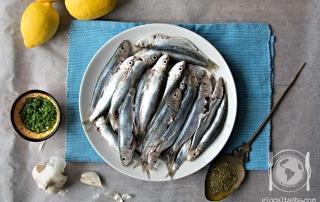 sarde o sardine